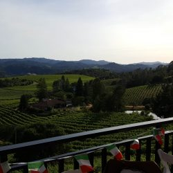 View from estate balcony