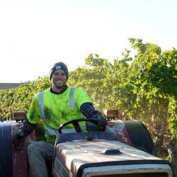 Harvester driving