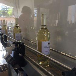 bottles on belt at processing plant