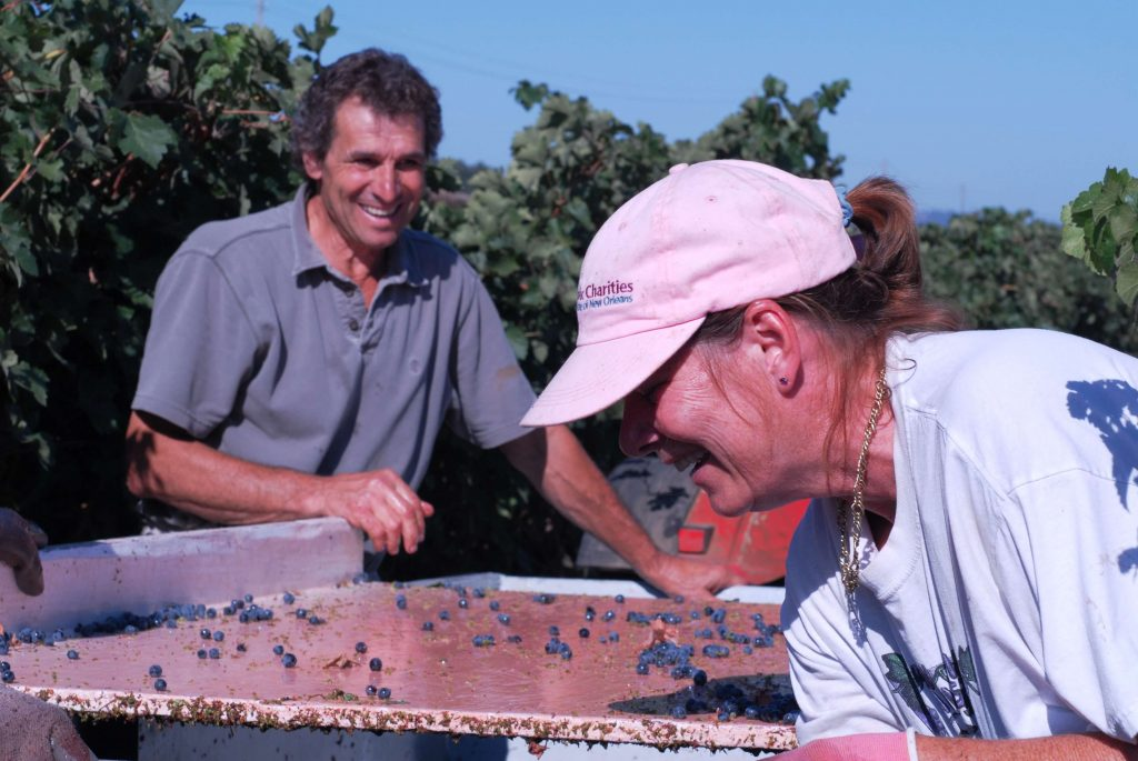 Joe and Norma Ramazzotti sorting grapes
